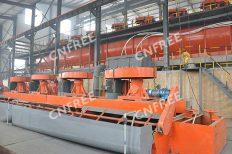 Molybdenum-Tungsten Flotation Plant in China